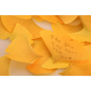 Gingko levél öntapadós jegyzettömb S