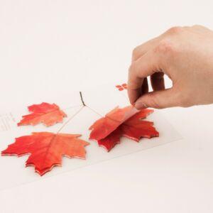 Sticky Leaf – Maple L