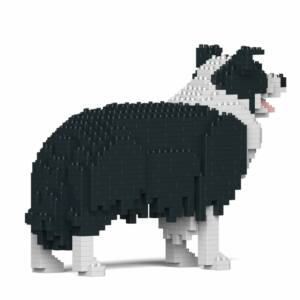 JEKCA - Border Collie