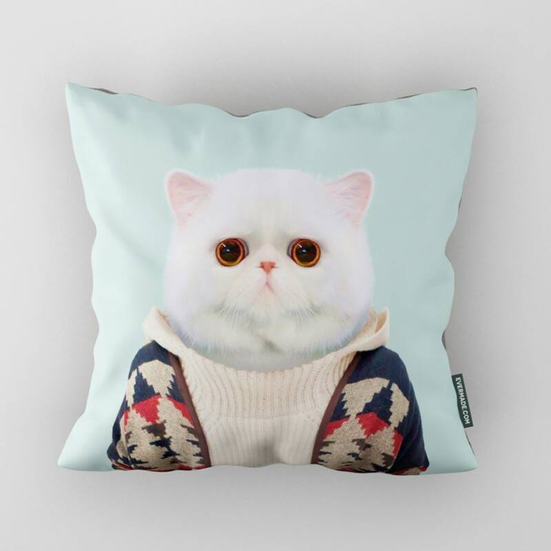 Exotikus Rövidszőrű Macska Párna
