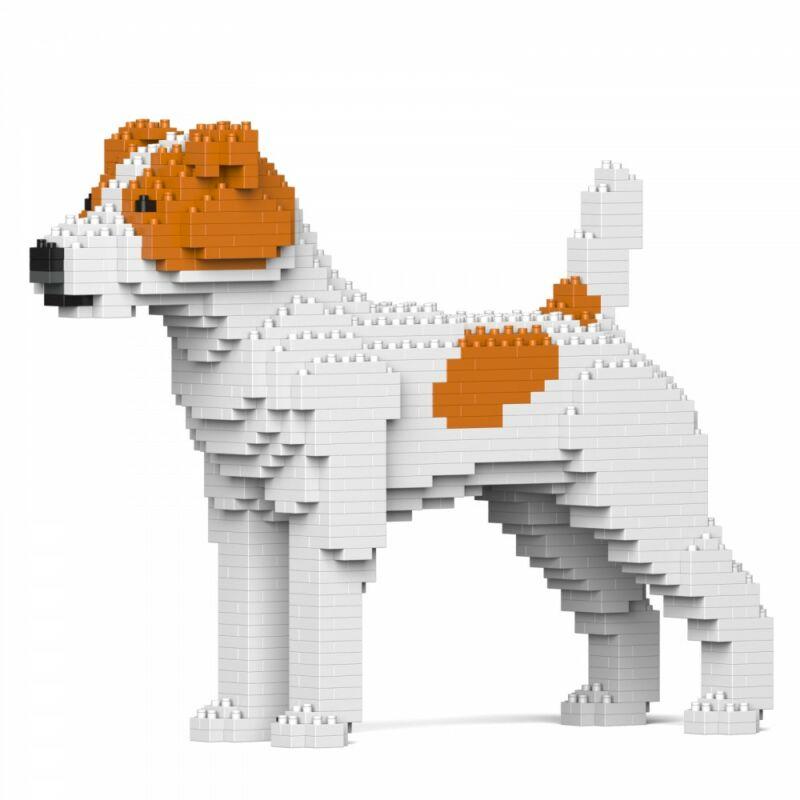Jekca-Jack Russel Terrier
